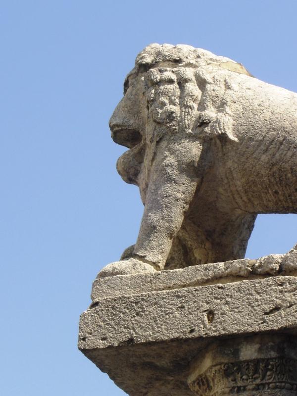 Leone presso Rocca dei Rettori - Foto di Stefania Leone